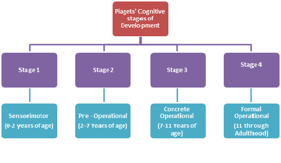 case study cognitive development Piaget's stages of cognitive development have shaped the way in which we think piaget's stages of cognitive development related study case brief & summary.